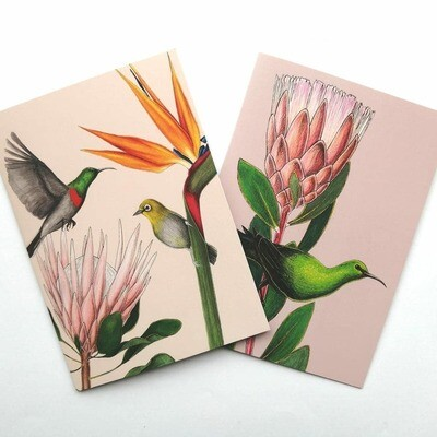 Silvan Cape Town : Themed Cards sets (assorted designs)
