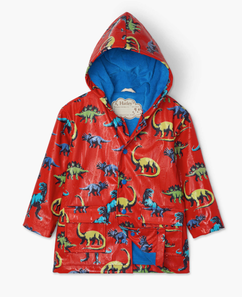 Painted Dinos color changing rain coat