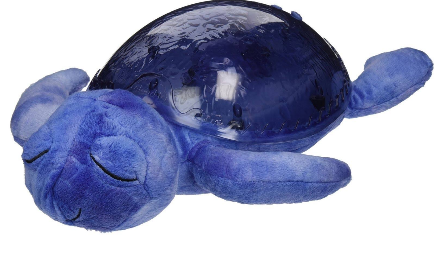 Tranquil Turtle Purple
