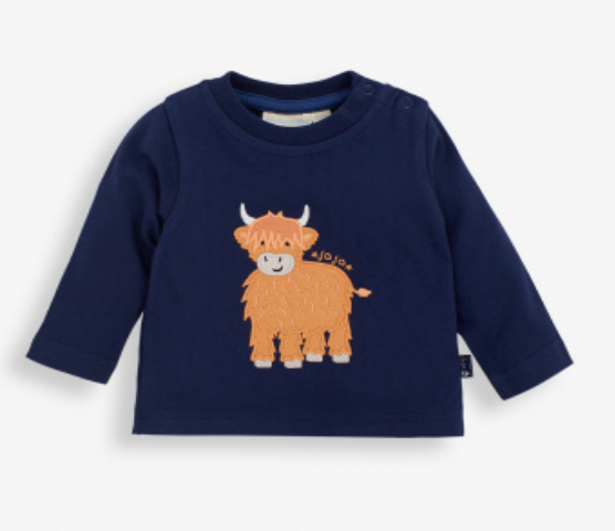 Highland Cow Baby top