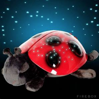 Twilight Ladybug red