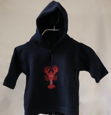 Claver Zip Up Hooded Sweater -24 mos Navy Cotton