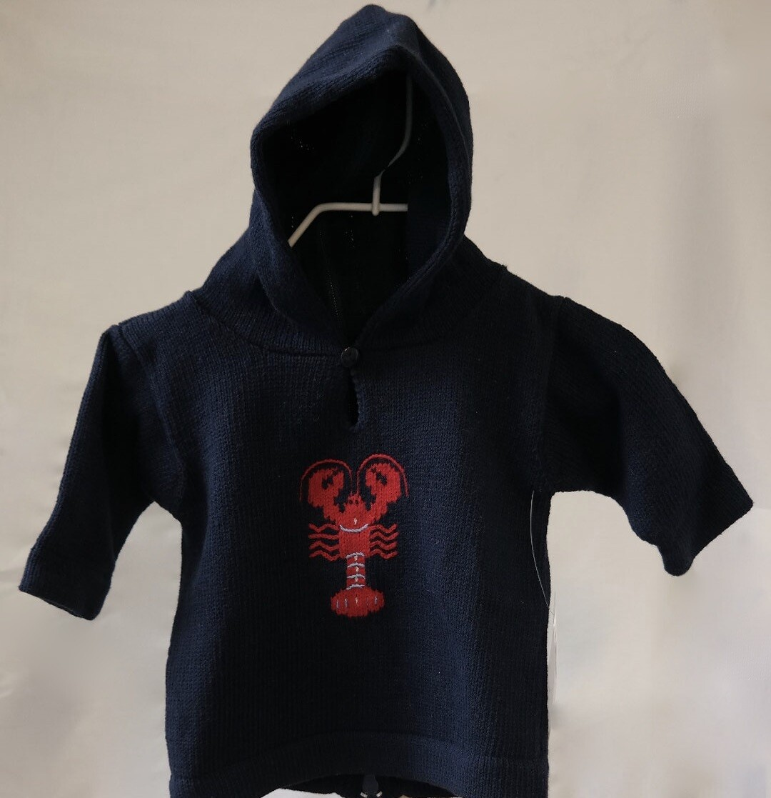 Claver Zip up hooded sweater - 12 mos navy cotton