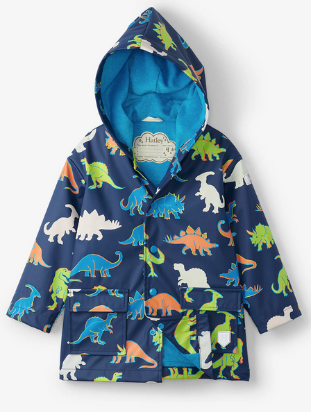 Linework Dinos Color Changing Raincoat