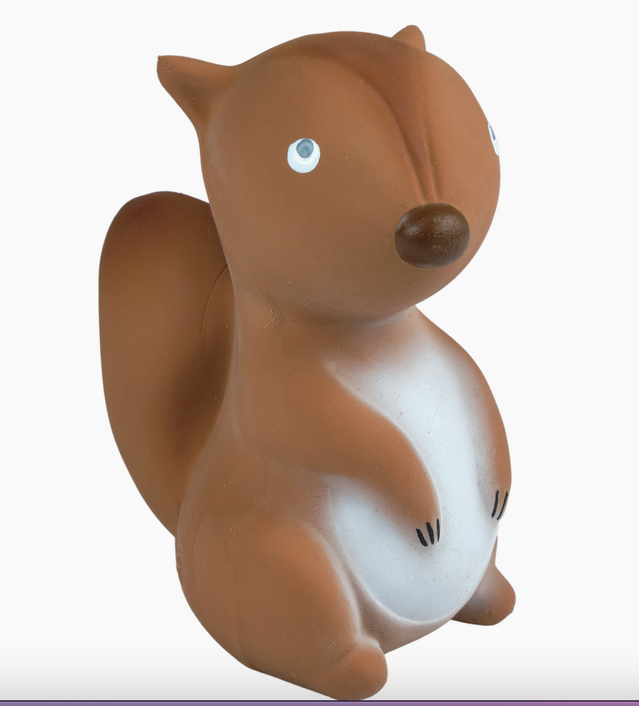Tikiri Squirrel Teether