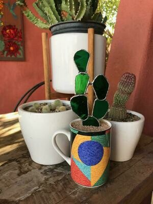 Green Prickly Pear in Deco Mug