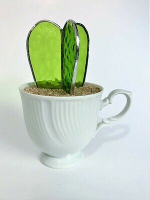 Lime Green Barrel Cactus