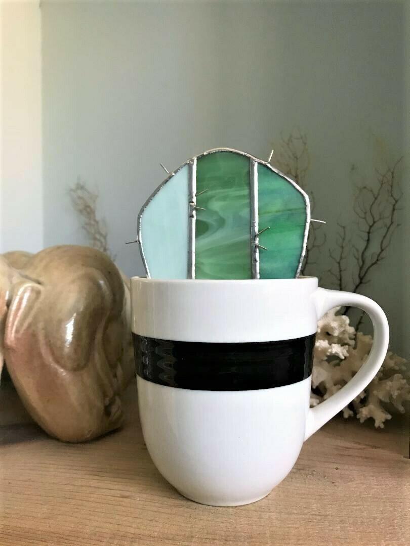 Milky Jade Flat Cactus