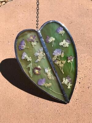 Globe Mallow Leaf