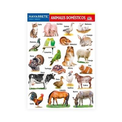 LÁMINA MURAL 50 X 70 CM ANIMALES DOMÉSTICOS