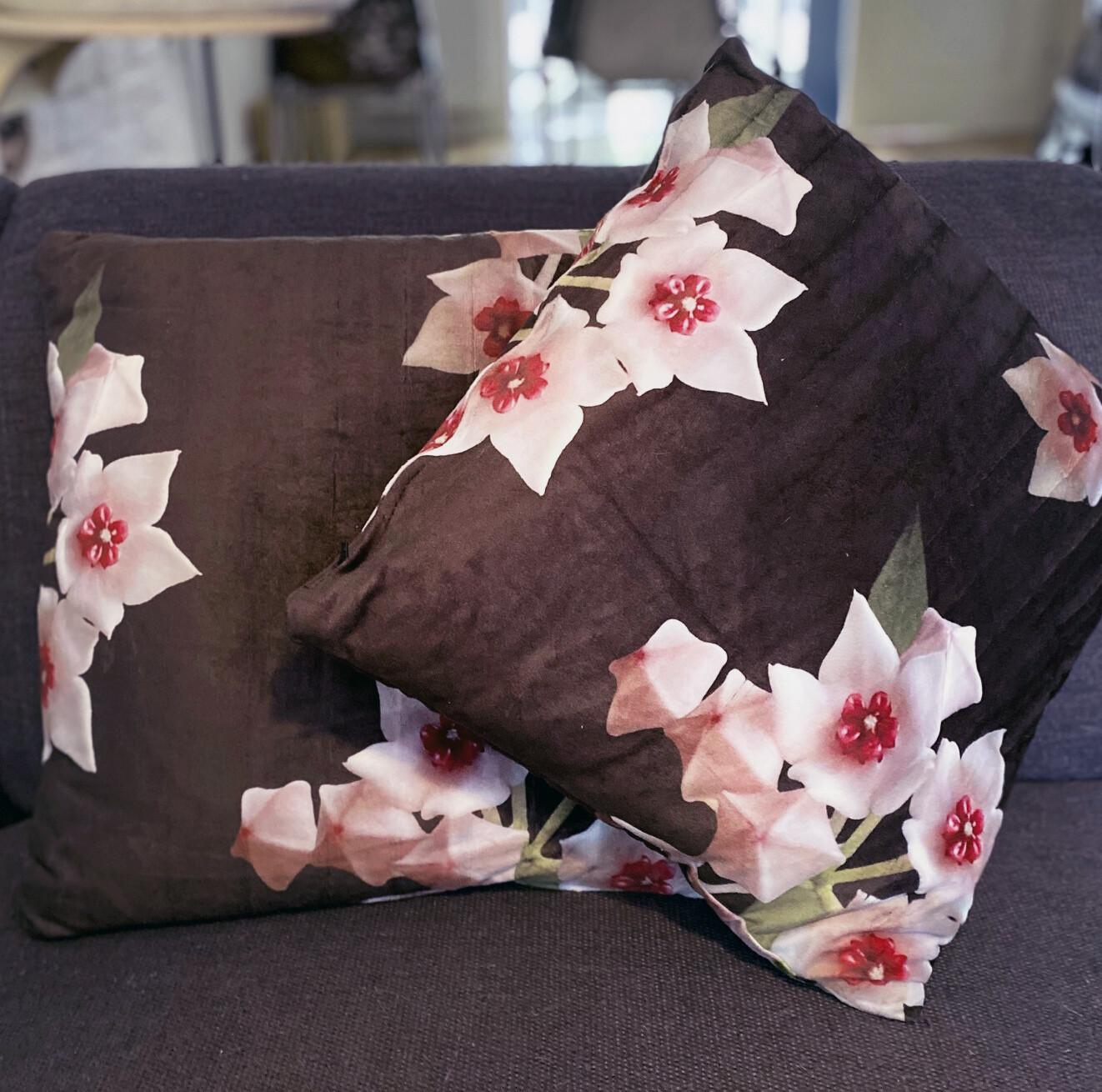 HOYA pillow