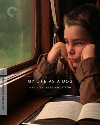 MY LIFE AS A DOG - BLURAY