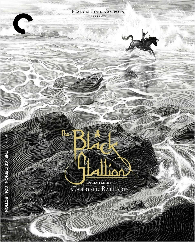 THE BLACK ITALLION - BLURAY