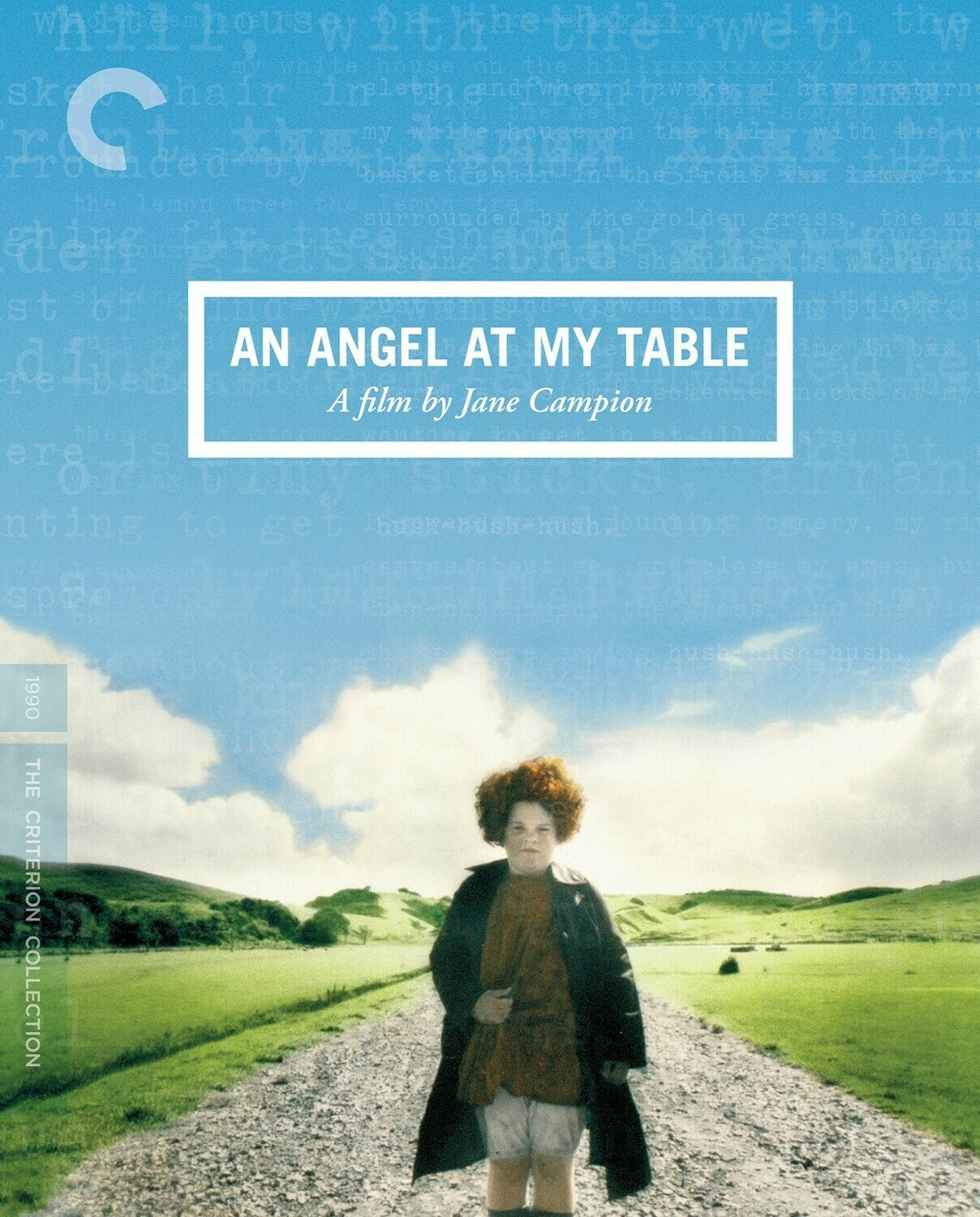 AN ANGEL AT MY TABLE - DVD