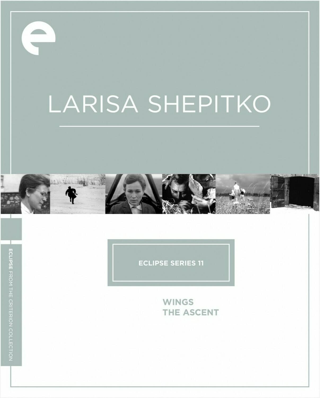 LARISA SHEPIRO - BOX SET - DVD