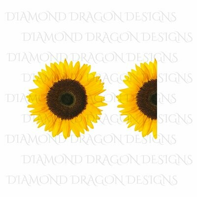 Sunflowers - Whole Sunflower, Half Sunflower, 2 Image Bundle, Real Sunflower, Waterslide