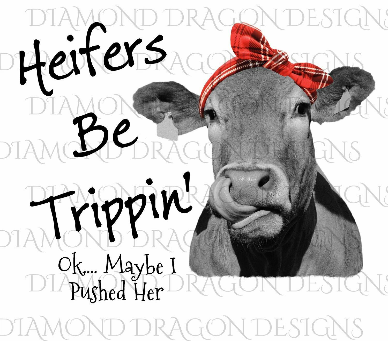 Cows - Heifer, Image, Heifers Be Trippin, Red Plaid Bandana, Red Bandana, Cowlick, Cute Cow Tongue, Waterslide