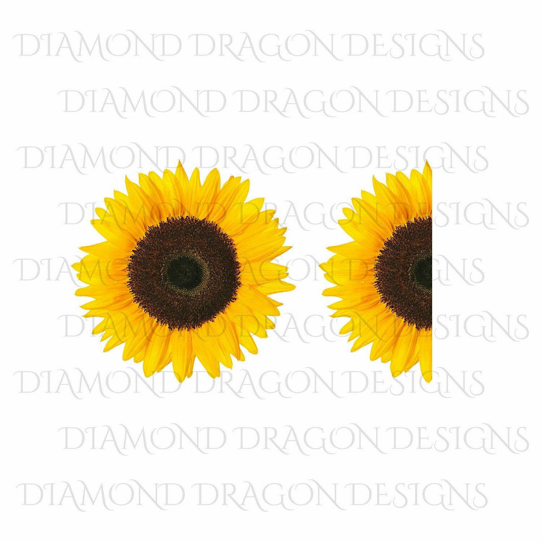 Sunflowers - Whole Sunflower, Half Sunflower, 2 Image Bundle, Real Sunflower, Waterslide