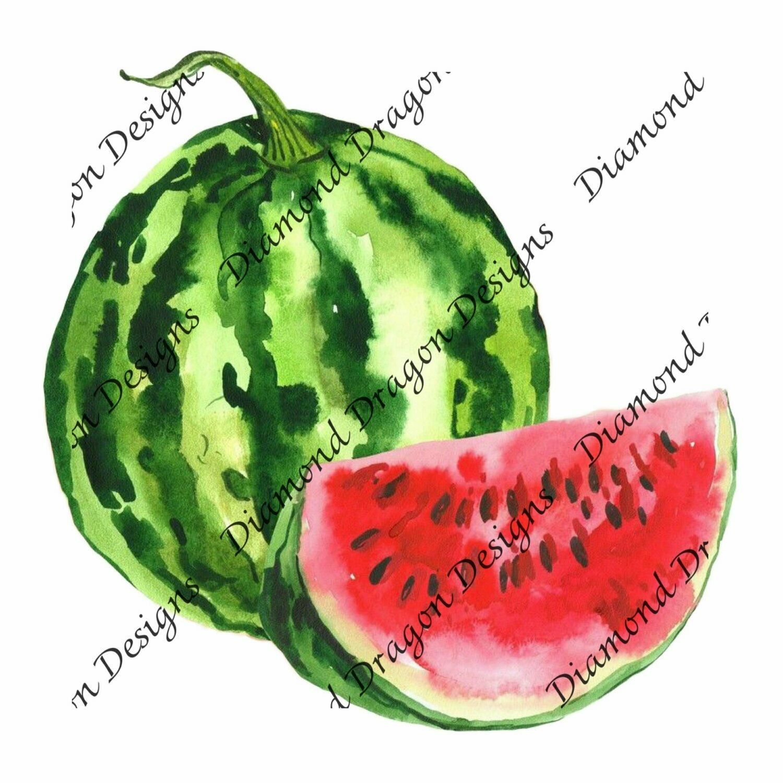Watermelon - Summer, Summer time, Watercolor, Waterslide