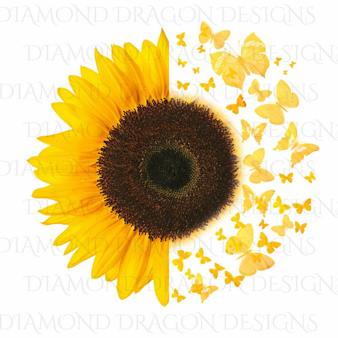 Sunflowers - Half Sunflower, Butterfly Sunflower, Butterflies, Yellow Sunflower Image, Digital Image
