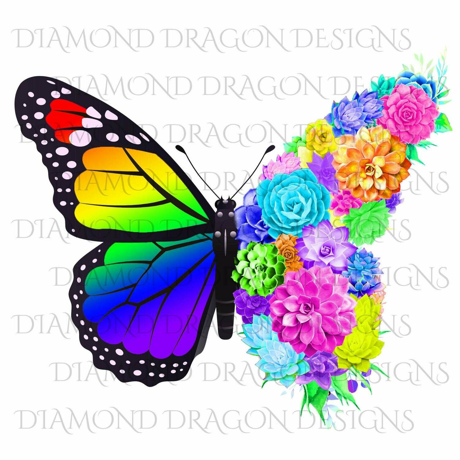 Butterfly - Succulent Butterfly, Monarch Butterfly, Rainbow, Watercolor Butterfly, Butterfly with Succulents, Digital Image