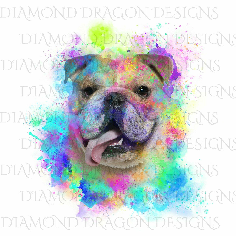 Dogs - Watercolor English Bulldog, Rainbow Bulldog, Watercolor dog, Digital Image