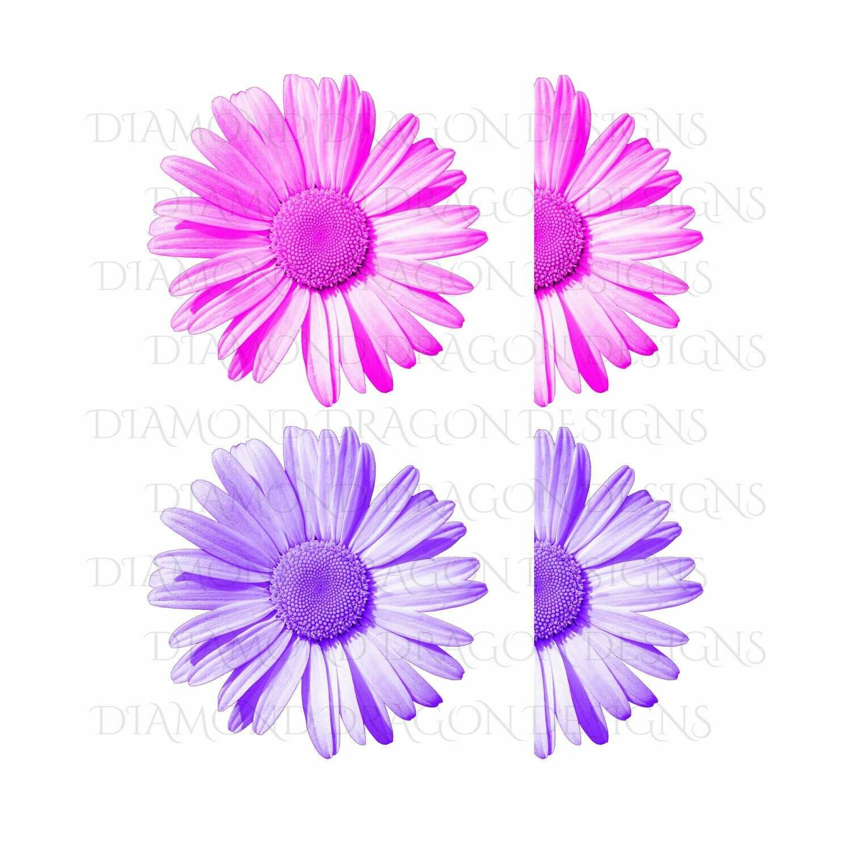 Flowers - Whole Daisy, Half Daisy, Pink Daisy, Purple Daisy, Daisy Flower Bundle, Digital Image