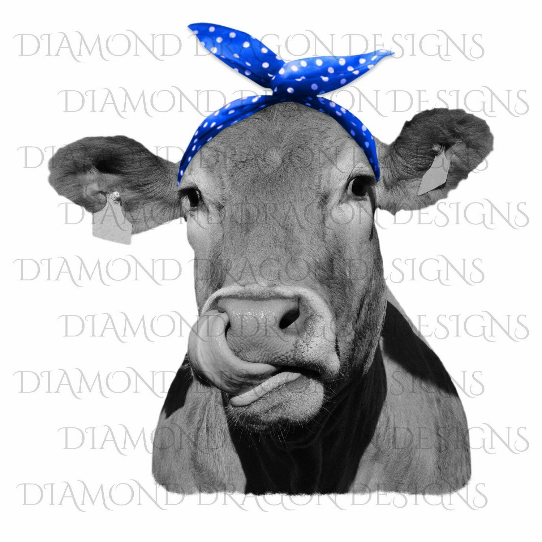 Cows - Heifer, Cute Cow with Blue Polkadot Bandana, Cowlick, Cow Tongue Out, Digital Image