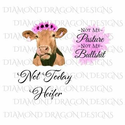 Cows - Heifer, Bundle, Not Today Heifer, Not My Pasture Not My Bullshit, Pink Sunflower Watercolor, Digital Image