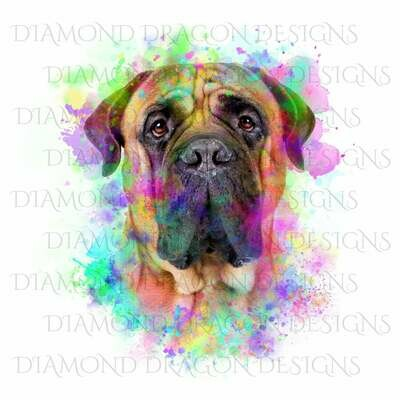 Dogs - Watercolor Bull-mastiff, Rainbow Bull-mastiff, Bull Mastiff Watercolor, Digital Image