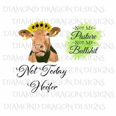 Cows - Heifer, Cow, Not Today Heifer, Not My Pasture Not My Bullshit, Bundle, Sunflower, Watercolor, Digital Image
