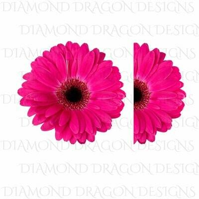 Flowers - Whole Daisy, Half Daisy, Pink Gerbera Daisy, Pink Gerbera Flower, Digital Image