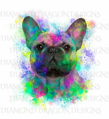 Dogs - Watercolor French Bulldog, Rainbow French Bulldog, French Bulldog Watercolor, Digital Image
