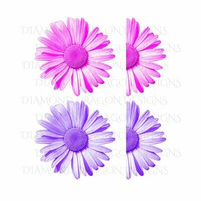 Flowers - Whole Daisy, Half Daisy, Pink Daisy, Purple Daisy, Daisy Flower Bundle, Digital Image