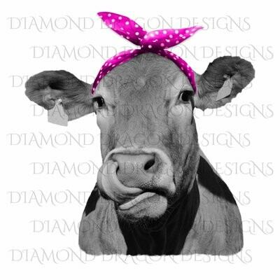Cows - Heifer, Cute Cow with Pink Polkadot Bandana, Cowlick, Cow Tongue Out, Digital Image