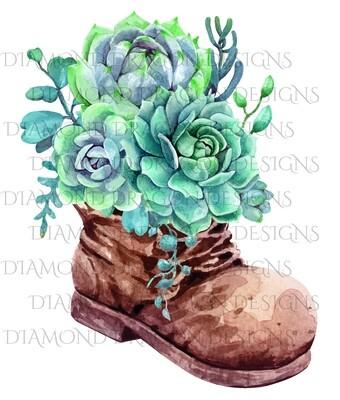 Cactus - Succulents in Boot, Digital Image