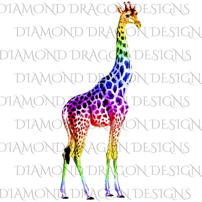 Giraffe - Rainbow Giraffe