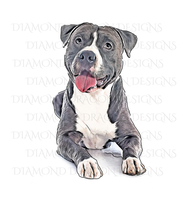 Custom Image - Cartoon YOUR Pet , Digital Image