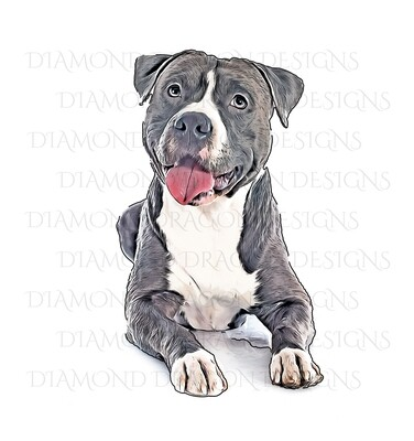 Custom Image - Cartoon YOUR Pet , Digital Image