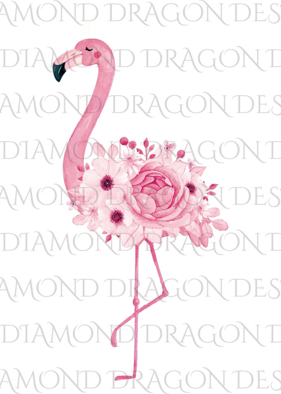 Flamingos - Watercolor Floral Flamingo, No Flower Crown Flamingo, Watercolor Flamingo, Digital Image