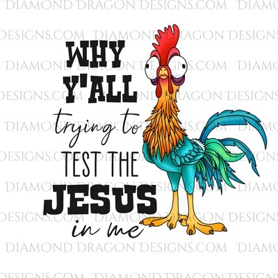 Chickens - Rooster, Funny, Why Y'all Trying to Test the Jesus in me, Waterslide