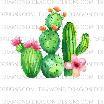 Cactus - Watercolor Cactus, Floral, Waterslide