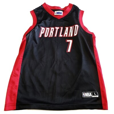 Portland Blazers Brandon Roy NBA Jersey
