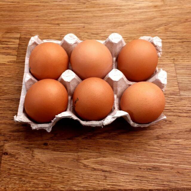 Eggs(large) - free run