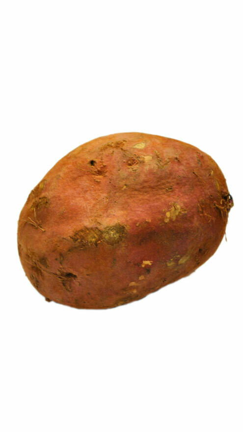 Patate douce chaire blanche 1kg