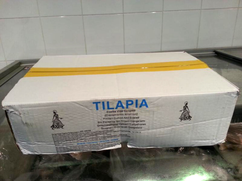 Carton TILAPIA Gros (10kg)