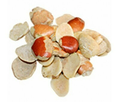 Sioko en grain 100 gr