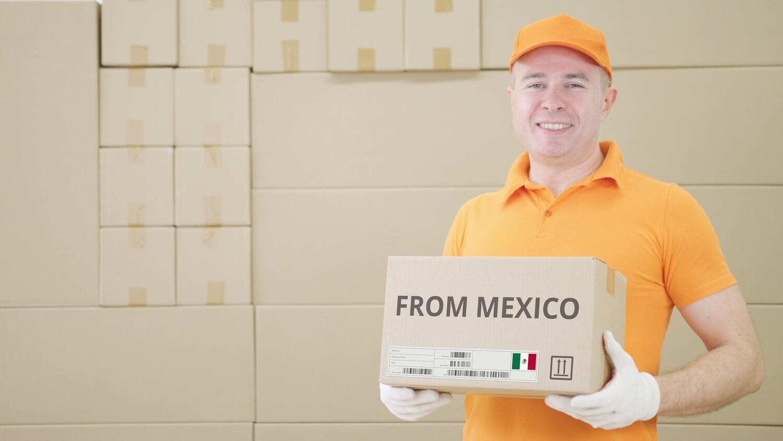 Envios en Mexico - Domésticos