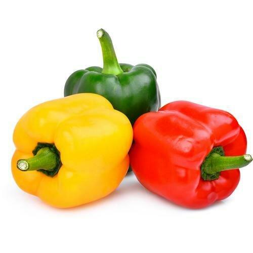 Bell Pepper 1.14 kg / 2.5 lb