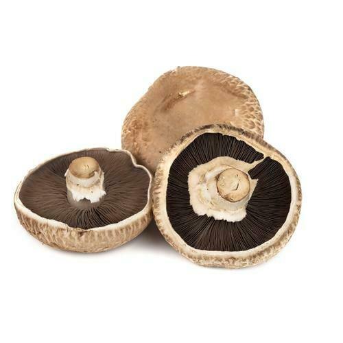 Portobello Mushroom 300 g / 10.5 oz